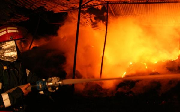 incendiu ferma