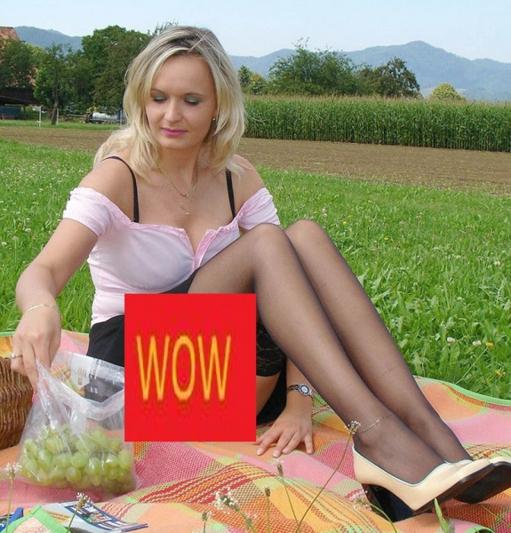 la picnic20