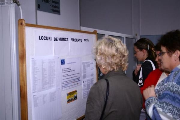 locuri_de_munca1-1