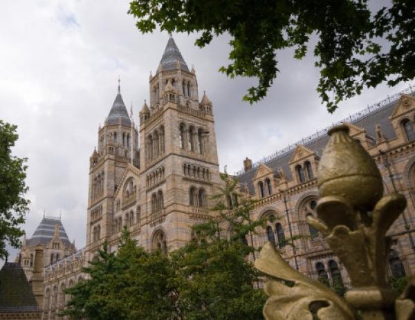 Muzeul de Istorie din Londra